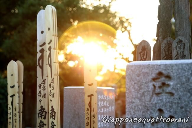 sole-cimitero